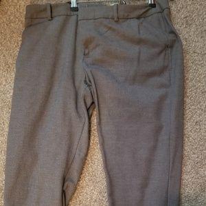 Pants - Capri Cut Dress Slacks